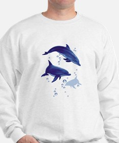 Blue dolphins Jumper