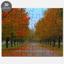 Dreamy Fall New England Drive Puzzle