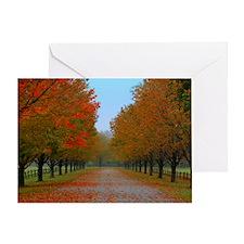 Dreamy Fall New England Drive Greeting Card