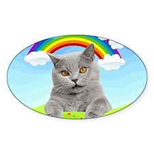 Rainbow Kitty Decal