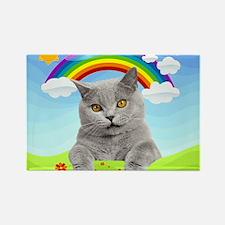 Rainbow Kitty Rectangle Magnet