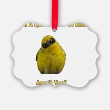Special Kind of Idiot Ornament