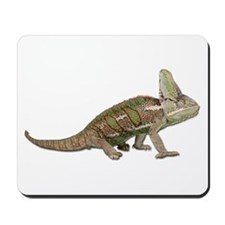 Chameleon Photo Mousepad