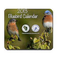 2013 BRAW Calendar Mousepad