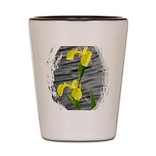 Yellow2 Shot Glass