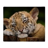 Siberian tiger Fleece Blankets