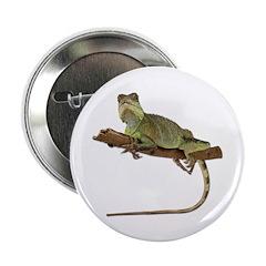Iguana Photo Button