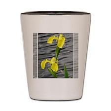 Yellow4 Shot Glass