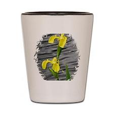 Yellow5 Shot Glass