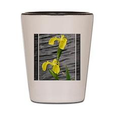 Yellow3 Shot Glass