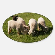 Ewe-niquely Me! Sticker (Oval)