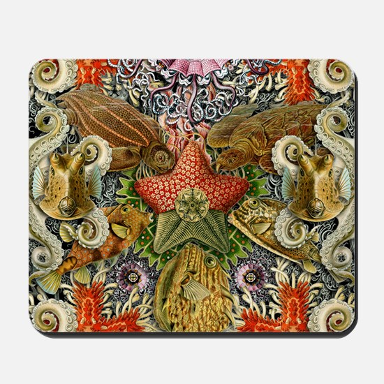 Forms of Nature 2 Mousepad