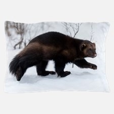 Wolverine in the snow Pillow Case