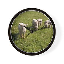 Friendly Lamb Wall Clock