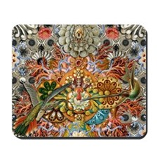 Forms of Nature 1 Mousepad