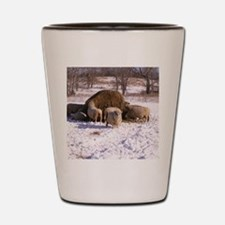 Ewes Very Fluffy! Shot Glass