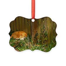 Cat Nap Ornament
