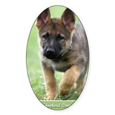 German Shepherd dog puppy Decal