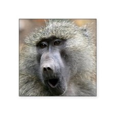 """Olive Baboon Square Sticker 3"""" x 3"""""""