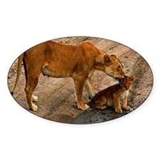 Lioness and cub Decal