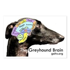 The Greyhound Brain Postcards (Package of 8)