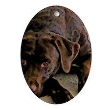 chocolate lab Oval Ornament