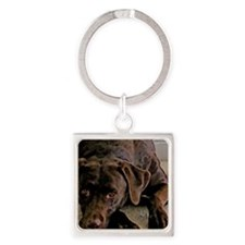 chocolate lab Square Keychain