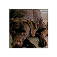 "chocolate lab Square Sticker 3"" x 3"""