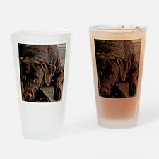 chocolate lab Drinking Glass