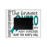 Ovarian cancer Picture Frames