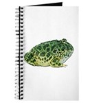 Pacman Frog Photo Journal