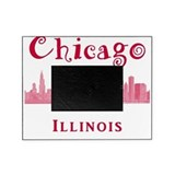 Illinois Picture Frames