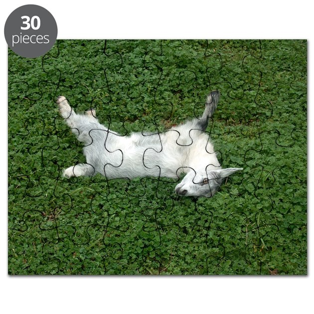 Fainting Goat Puzzle By ADMIN CP55151541