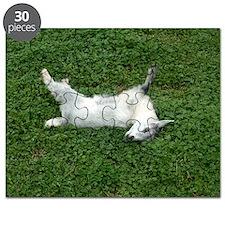 fainting goat Puzzle
