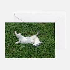 fainting goat Greeting Card