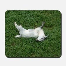 fainting goat Mousepad
