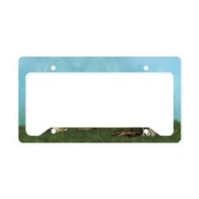 sf_3_5_area_rug_833_H_F License Plate Holder