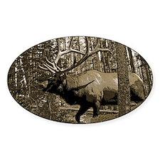 Bull elk in pines Decal
