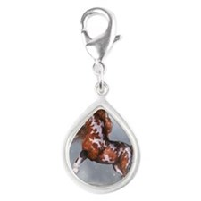 nh_60_curtains_834_H_F Silver Teardrop Charm