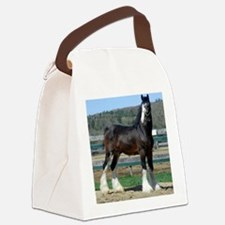Ruskington Danny, English Shire S Canvas Lunch Bag
