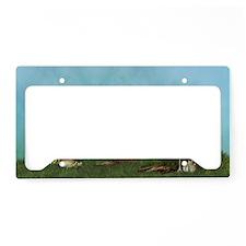 sf_5_7_area_rug_833_H_F License Plate Holder