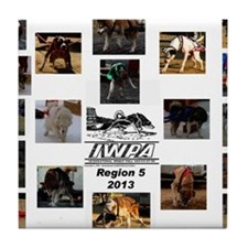 IWPA Region 5 Tile Coaster