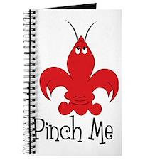 Pinch Me Journal