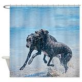 Beach dog Shower Curtains