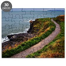 The Irish Sea Puzzle