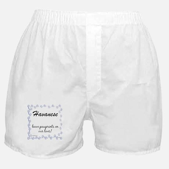 Havanese Pawprint Boxer Shorts