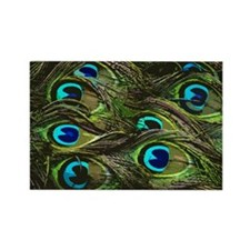 Art Deco Peacock Feathers Rectangle Magnet