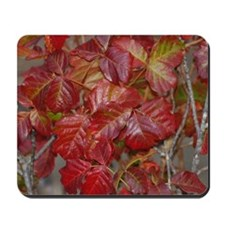 Red Poison Oak Leaves Mousepad