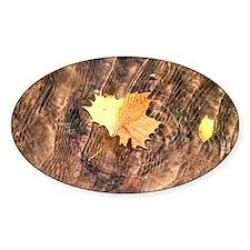 Float Leaf Rug Decal
