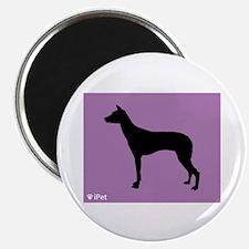 PIO iPet Magnet